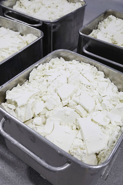 Original Plain Goat Cheese